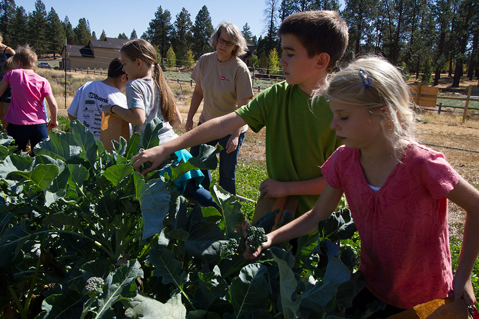 2015-09-25-Seed-to-Table-23