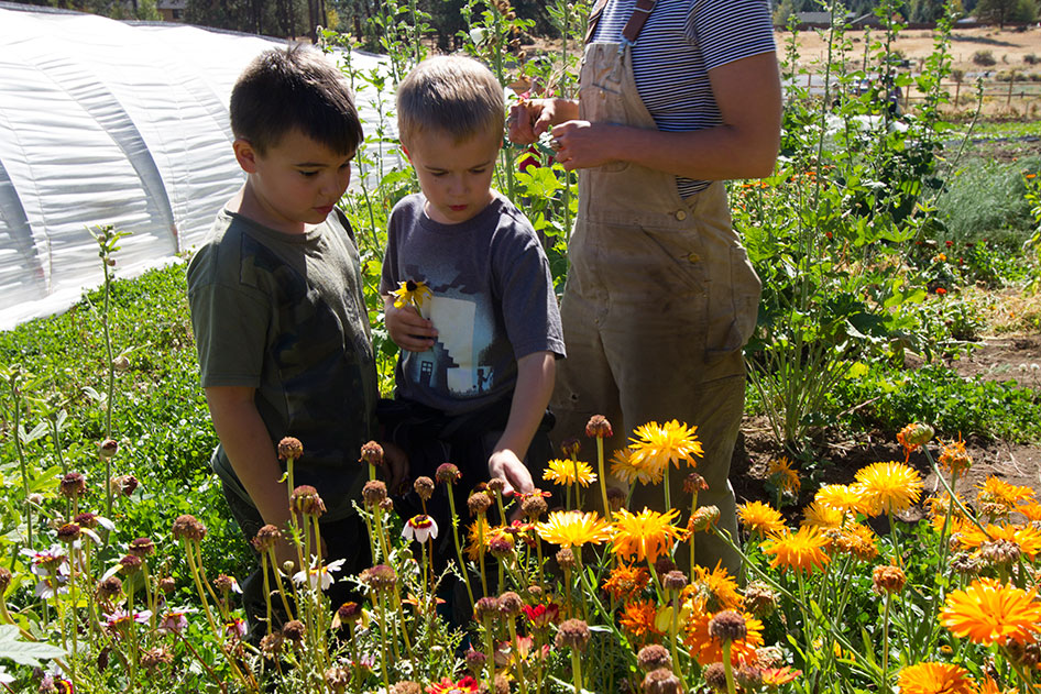 2015-09-25-Seed-to-Table-27